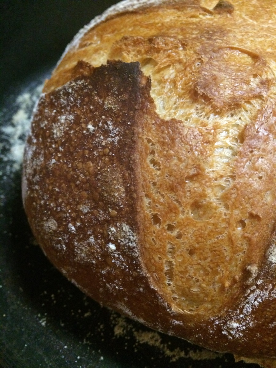 Homemade Four Ingredient No Knead Artisan Bread